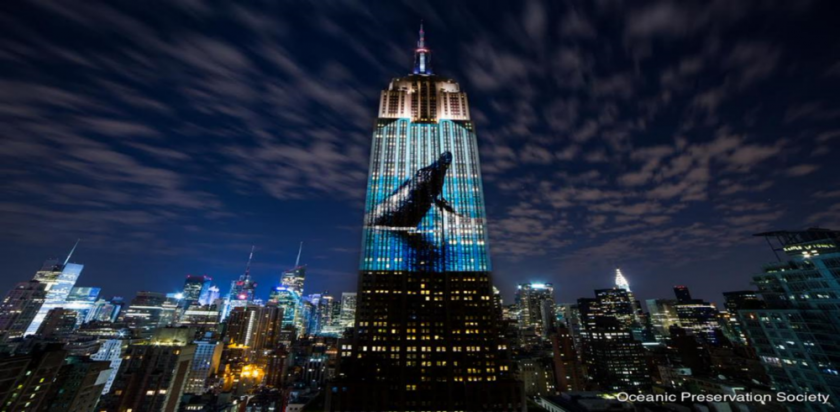 Discovery Channel UK will be premiering Oscar®-winning director Louie Psihoyos' ground breaking film Racing Extinction