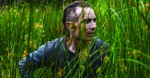 The Survivalist (18) | Close-Up Film Review