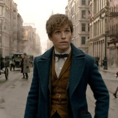 Live Stream: Fantastic Beasts and Where to Find Them Fan Event