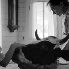 Park Circus to release American gothic horror 'The Eyes Of My Mother'