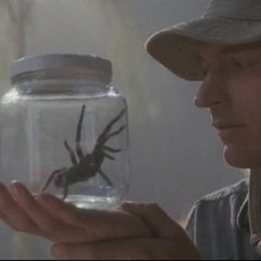Arachnophobia is getting a remake